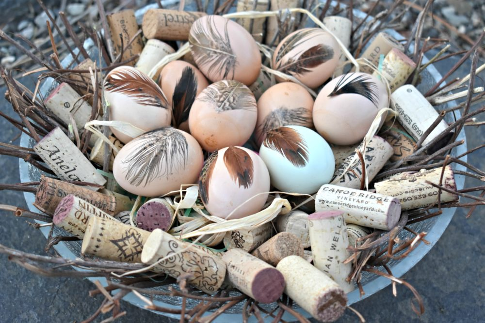Feathered Easter Eggs in a Cork Nest.